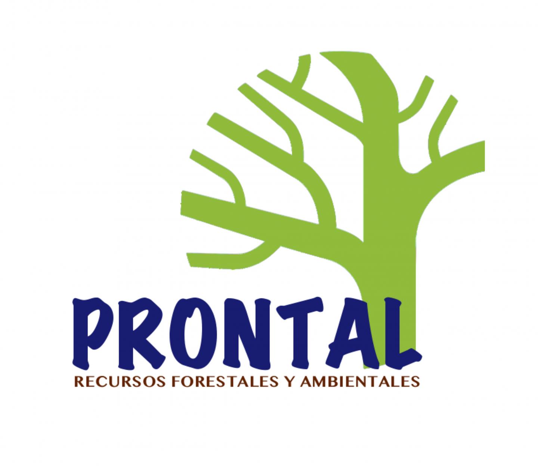 Prontal