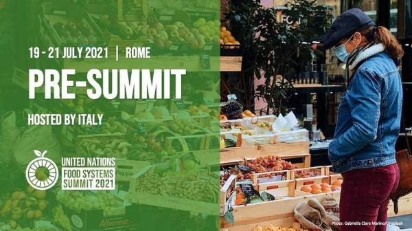 Pre-Summit gathering for the 2021 UN Food Systems Summit