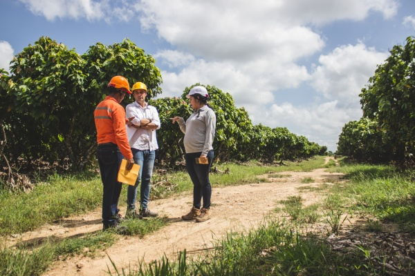 Growing sustainable cocoa in Colombia's coal country
